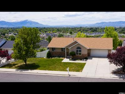 Springville Single Family Home For Sale: 991 N 600 E