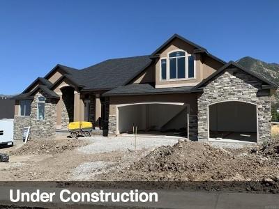 Tooele County Single Family Home For Sale: 685 E Oakridge Dr