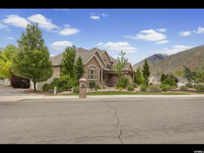 Springville Single Family Home Under Contract: 1204 Valley Sage Dr
