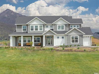 Single Family Home For Sale: 255 E 600 N