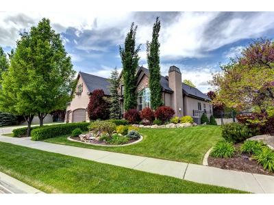 Spanish Fork Single Family Home Under Contract: 1212 River View Dr