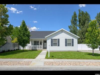 Eagle Mountain Single Family Home For Sale: 1755 E Sunrise Dr S