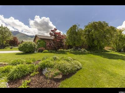 Fruit Heights Single Family Home For Sale: 1041 S Creek View Dr E