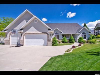 Draper Single Family Home For Sale: 483 Lana Ct