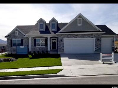 West Jordan Single Family Home For Sale: 7984 S Red Baron Ln