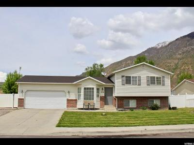 Springville Single Family Home For Sale: 216 W 750 N
