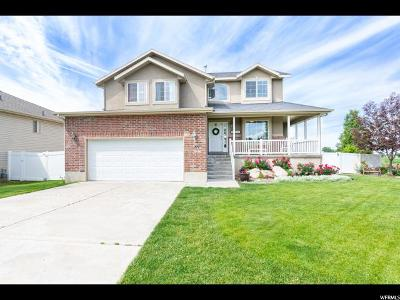 Clearfield Single Family Home For Sale: 89 S 525 W