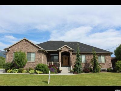 Kaysville Single Family Home For Sale: 1609 W Galbraith Ln S