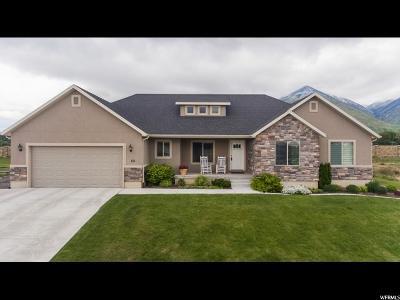 Salem Single Family Home For Sale: 66 N 900 E