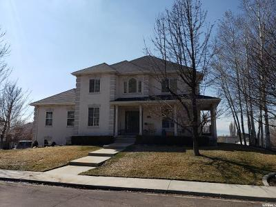 Orem Single Family Home For Sale: 1807 N Skyline Dr