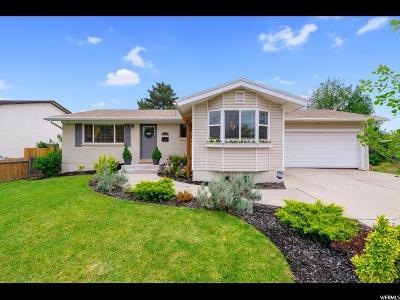 Sandy Single Family Home For Sale: 985 E Buddlea Dr