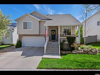 Eagle Mountain Single Family Home For Sale: 7524 N Snowy Owl Rd