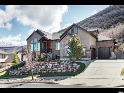 Draper Single Family Home Under Contract: 14779 S Maple Park Ct