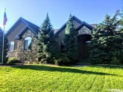 Sandy Single Family Home For Sale: 2030 E 10765 S