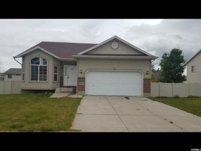 Roy Single Family Home Under Contract: 4109 S Lily Dr
