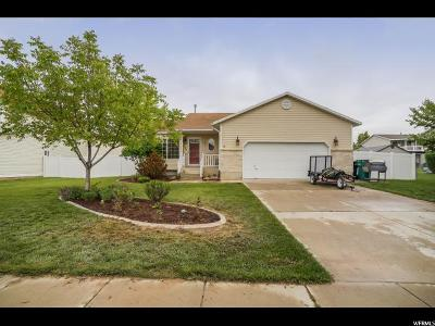 Clearfield Single Family Home For Sale: 282 W 1980 S