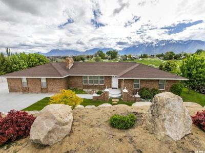 South Jordan Single Family Home For Sale: 11311 S Brook N Lance Ln