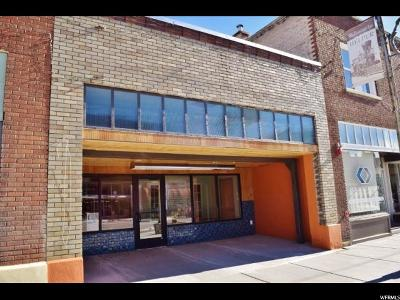 Commercial For Sale: 133 S Main