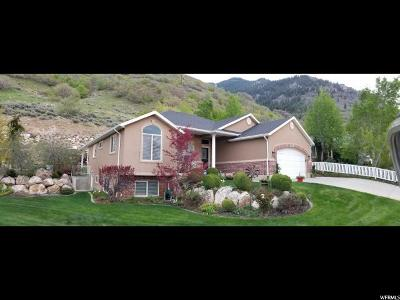 North Ogden Single Family Home Backup: 2536 N 1600 St E
