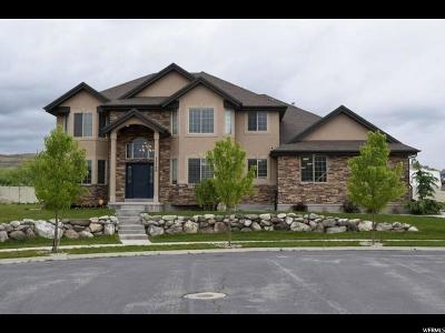 Bluffdale Single Family Home For Sale: 15786 S Gun Stock Dr W