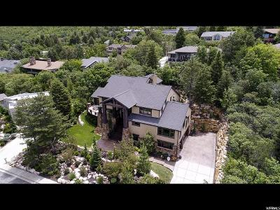 Single Family Home For Sale: 4531 S Mathews Way