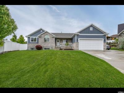 Herriman Single Family Home For Sale: 14217 S Tempest Ridge Cir