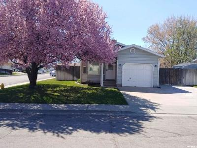 Orem Single Family Home For Sale: 1139 N 1080 W
