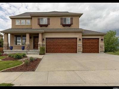 Sandy Single Family Home For Sale: 2119 E Rocklin Dr S
