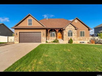 Heber City Single Family Home For Sale: 2334 S 270 E