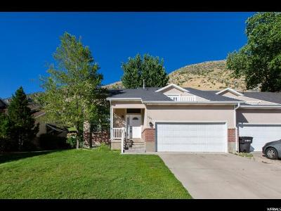 Provo Single Family Home For Sale: 1325 S Slate Canyon Dr