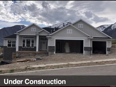 Elk Ridge Single Family Home For Sale: 1286 N Red Bud #10