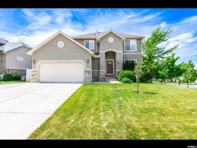 North Ogden Single Family Home For Sale: 953 E 2675 N