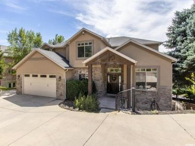 Holladay Single Family Home For Sale: 6450 S Heughs Canyon Dr