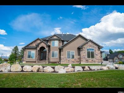 Kaysville Single Family Home For Sale: 611 S Wellington Dr