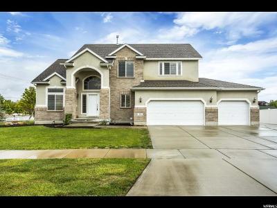 Draper Single Family Home For Sale: 319 E Draper Downs Dr