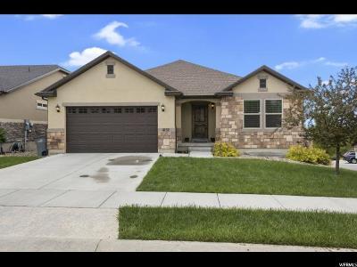South Jordan Single Family Home For Sale: 11152 S Shilling Ave W