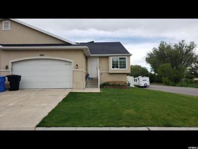 North Ogden Single Family Home For Sale: 1895 N 300 E