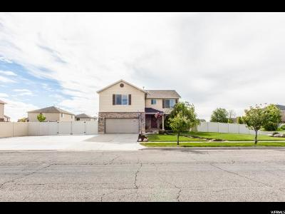 Syracuse Single Family Home For Sale: 2512 S Doral Dr W