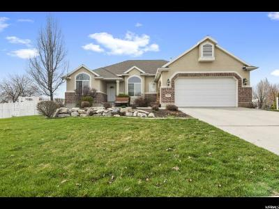 Lindon Single Family Home Under Contract: 372 W 625 N