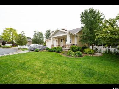 Sandy Single Family Home For Sale: 330 E Old Sandy Ct