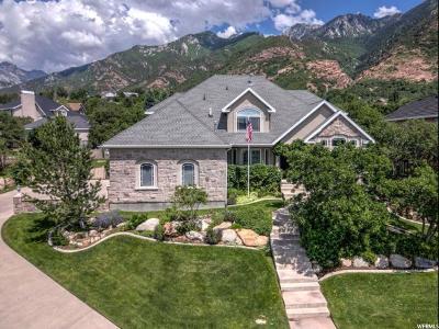 Sandy Single Family Home For Sale: 11777 S Autumn Ridge Cv