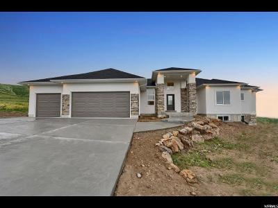 Smithfield Single Family Home For Sale: 1222 E 300 S