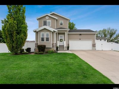 Syracuse Single Family Home For Sale: 3881 Augusta Dr.