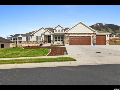 Salem Single Family Home For Sale: 1071 S 850 E