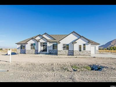 Tooele County Single Family Home Under Contract: 1291 E Adobe Rock Dr N #106