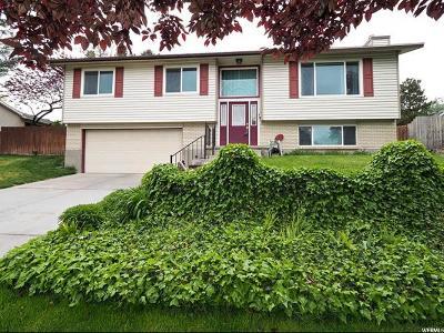 Sandy Single Family Home For Sale: 9139 S Terri Lynn E