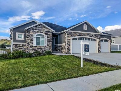 Herriman Single Family Home For Sale: 7401 W Hall Dr