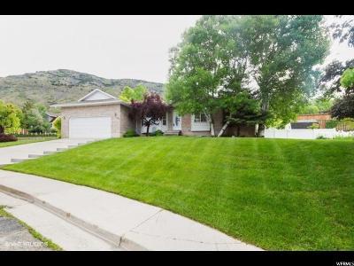 Pleasant Grove Single Family Home For Sale: 320 N 1350 E