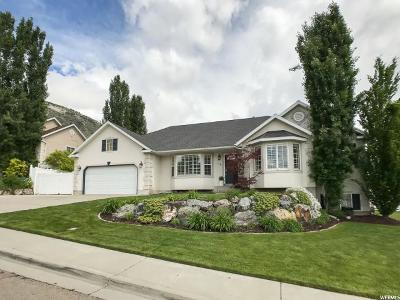 Pleasant Grove Single Family Home For Sale: 546 Canyon View Dr