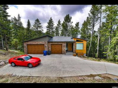 Park City Single Family Home For Sale: 80 Matterhorn Dr
